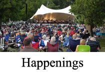 Happenings image of crowd at outdoor concert